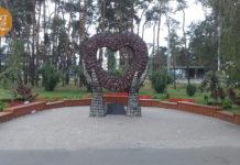 Сердце в руках Дарница