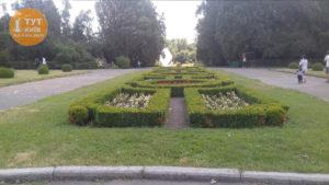 алея ботанический сад