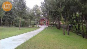 альтанка в парке Троещина