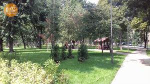 беседки парк Веселка
