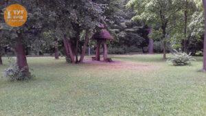 грибок в парке