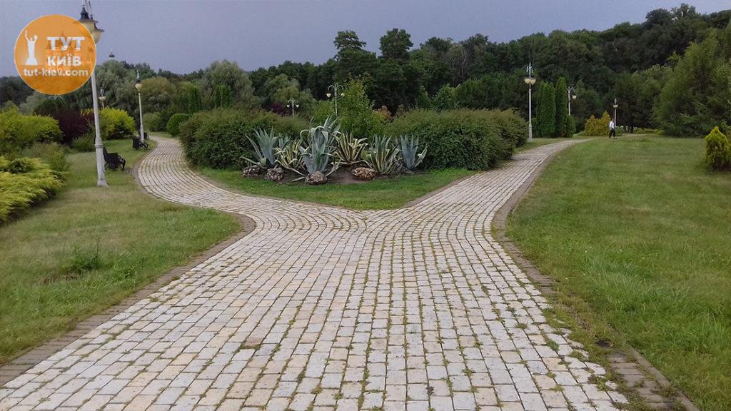 кактусы в парке Феофания