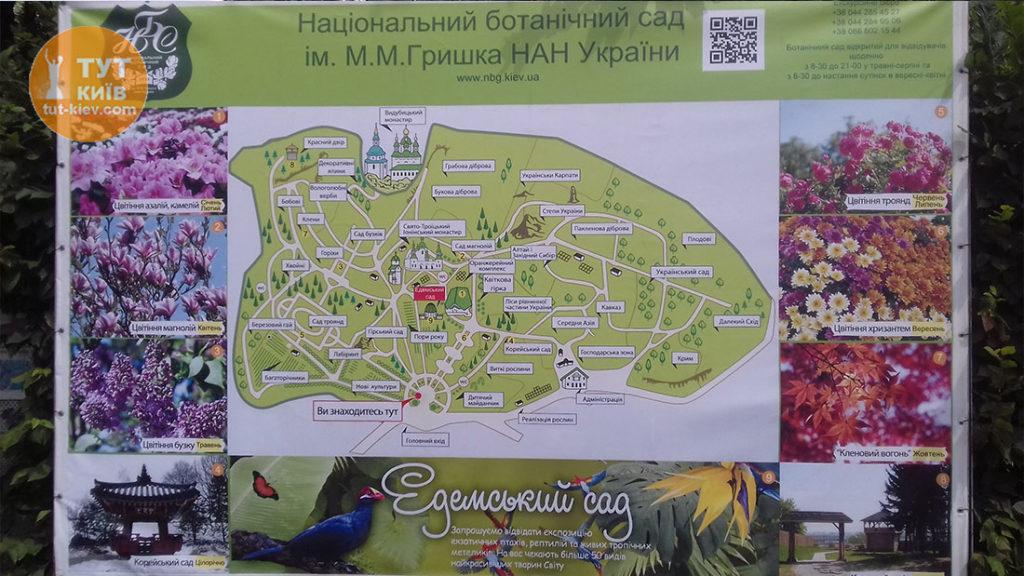 карта ботанический сад