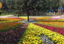 клумба парк Веселка