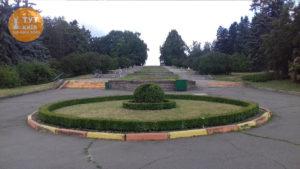 центральная аллея ботанический сад