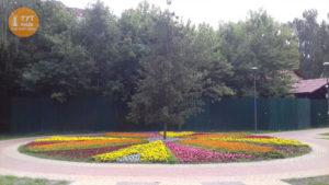 центральная клумба парк Веселка