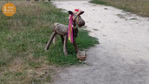 бичок в Пирогово