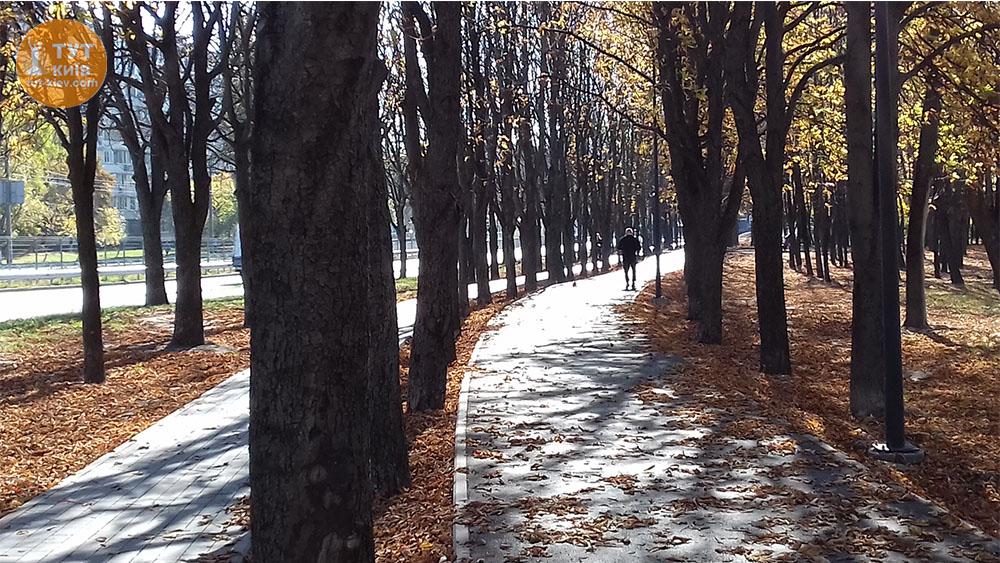 Аллеи парк Юность